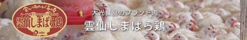 大光食品ブランド肉:雲仙しまばら鶏
