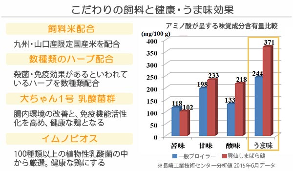 雲仙島原鶏:乳酸菌配合飼料と旨みアップ分析
